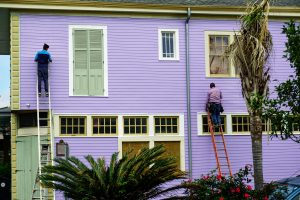Denver Painting Business Walls By Design