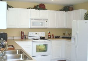 Cabinet Painter In Highlands Ranch